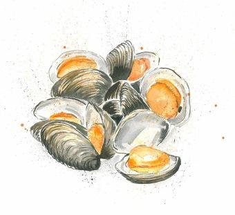 clams_o