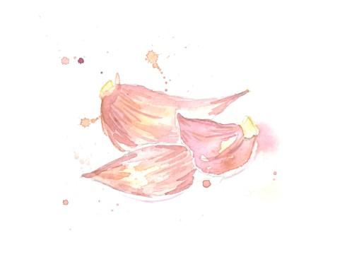 garlic-cloves_o
