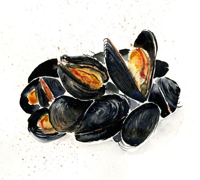 mussels-edited_o